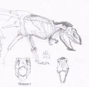 tyrannosaurs sketch